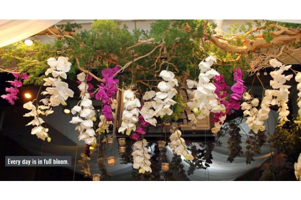 Image Gallery from Ben Foster Florist