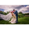 Image Gallery from   Affordable Wedding Photographer in Miami