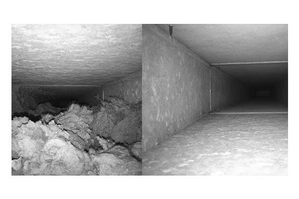 Image Gallery from GreenDuctors Chimney Sweep North Bergen