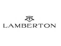 logo Lamberton Law Firm, LLC