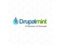 Drupalmint