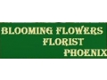 Blooming Flowers Florist