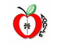 Apple Montessori Schools