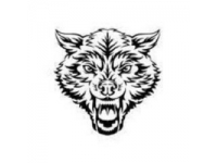 logo Roids Co
