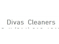 logo Diva Cleaners